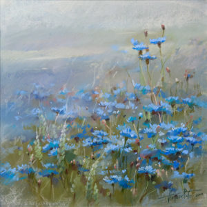 Васильки Cornflowers 53×53. 2011