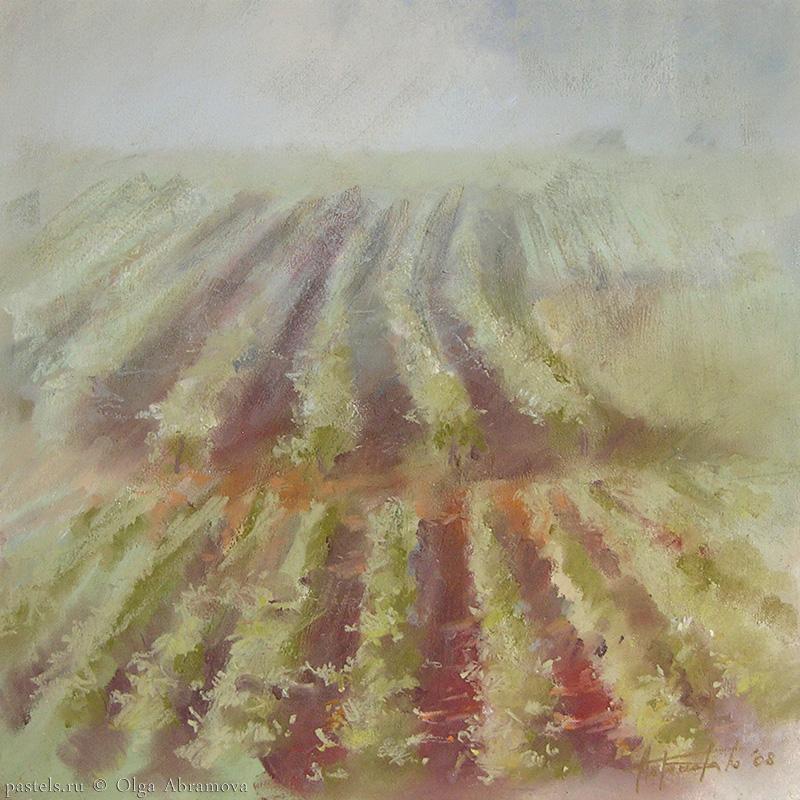 Vineyards 53x53. 2008