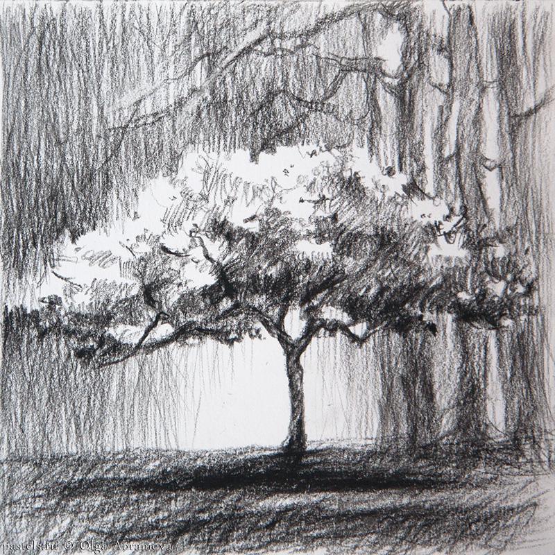 Tree 13×13. 2014