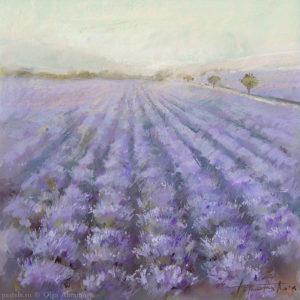Lavender 1 53×53. 2008
