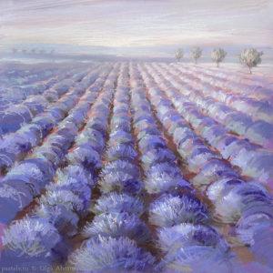 Лаванда. Прованс Lavender. Provence 60×60. 2013