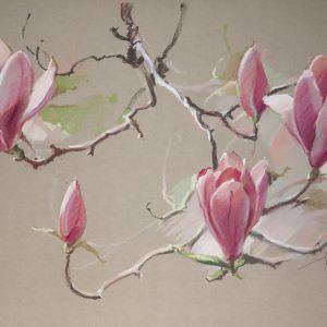 Magnolia 65×100. 2010