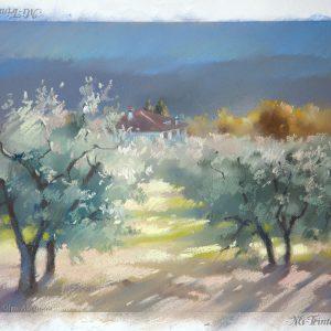 Оливковые сады 1 Olive gardens 1 21×29. 2013