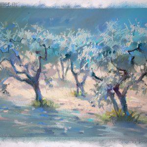 Оливковые сады 2 Olive gardens 2 21×29. 2013