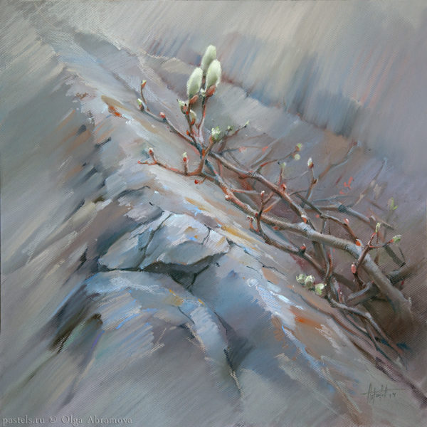 Northern willow 66×66. 2014