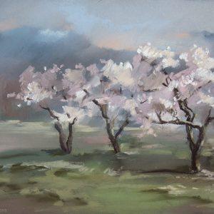 Яблоневый сад 2 Apple garden 2 34×44. 2012