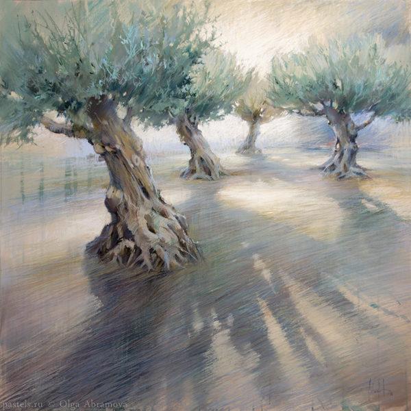 Каталанские оливы Catalan olive trees 90×90. 2016