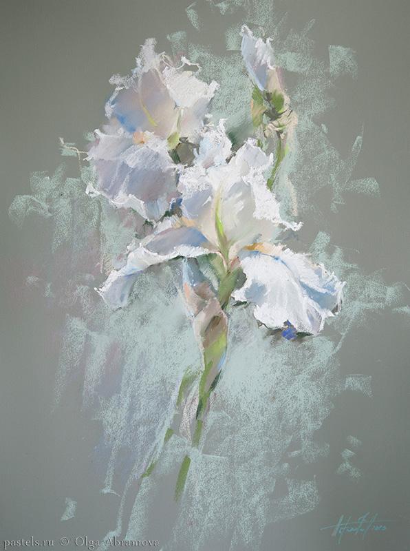 Белый ирис White iris 62x47. 2013