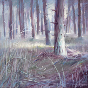 Игольчатый лес 48×48. 2017