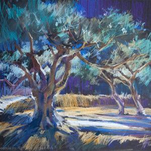 Оливковые сады 4. Вантебрен 31×32. 2017