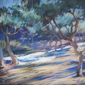 Оливковые сады 5. Вантебрен, 31×32. 2017